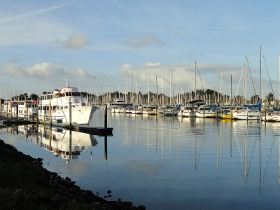 Berkeley Marina (By Daderot (I took this photograph.) [Public domain], via Wikimedia Commons)