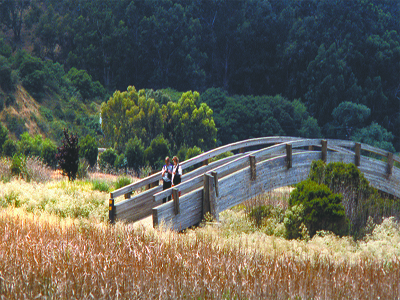Photo of people enjoying the East Bay Regional Park District
